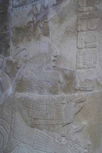eine Abbildung eines typischen Maya Mannes, mit gekrümmter Nase und flacher Stirn