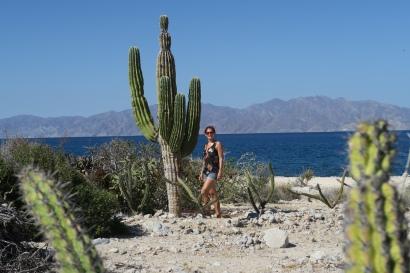 2016-05-02 Baja California (14)