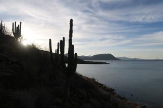 2016-05-02 Baja California (141)