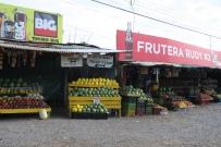 Fruchtstände