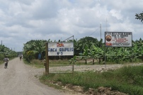 Dole Bananen Plantagen