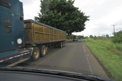 ein Lastwagen beladen mit Ananas