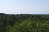 Blick von einer der höchsten Ruine vom Tikal