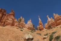 die bekannten Felspyramiden des Bryce Canyons