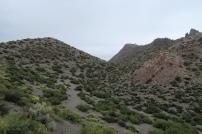 der Panum Crater ist zwischen 600 und 700 Jahren alt