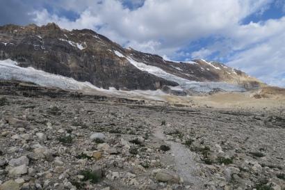der Iceline Trail führte am Gletscher entlang