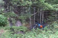 mit Bike und zu Fuss erkunden wir den Park
