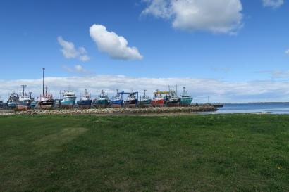 auf der Insel Lameque