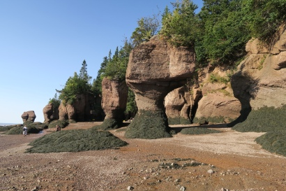 die Hopewell Rocks