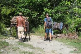 Auf der Wanderung auf den Yunque